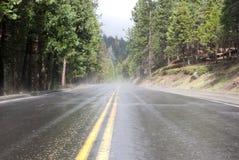 Nebelhafte Straße Stockfoto