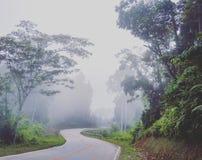 Nebelhafte Straße zu EL Nido Lizenzfreies Stockbild