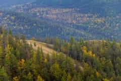 Nebelhafte Talstrecke Autumn Ins Stockfotos