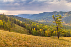 Nebelhafte Talstrecke Autumn Ins Lizenzfreies Stockfoto