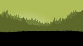 Nebelhafte Waldlandschaft für Spielhintergrund, mit dunklem Gras PA Stockfotografie