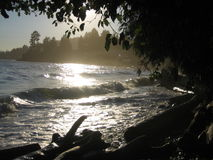 Nebelhafte Wellen Stockfotografie