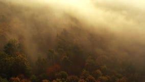 Nebelhafte Wolken über den Herbstwäldern, von der Luft stock footage