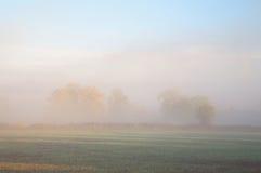 Nebelhafter Ackerlandhintergrund Lizenzfreie Stockfotos