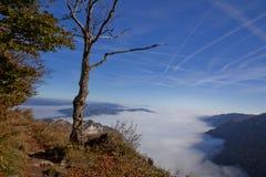 Nebelhafter Berg Stockbilder