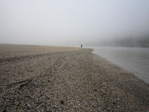 Nebelhafter früher Morgen Der niedrige wasser- Rhein lizenzfreies stockbild