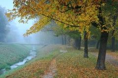 Nebelhafter Herbstmorgen Stockfoto