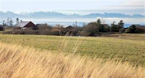 Nebelhafter Insel-Bauernhof Lizenzfreie Stockfotografie