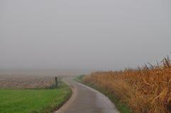Nebelhafter Morgen stockbilder