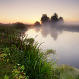 Nebelhafter Morgen auf dem Fluss Stockfoto