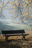 Nebelhafter Morgen im Herbstpark Stockfoto