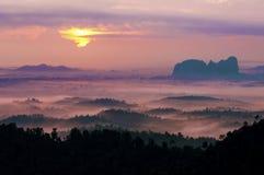 Nebelhafter Morgen am Panorama-Hügel. Lizenzfreie Stockfotos
