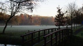 Nebelhafter Morgenherbst lizenzfreie stockfotos