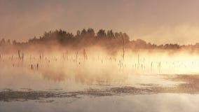 Nebelhafter Morgensonnenaufgang stock footage