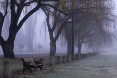 Nebelhafter Parkland Stockbild