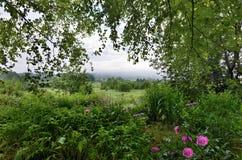 Nebelhafter Sommermorgen über dem Dorf lizenzfreie stockfotografie