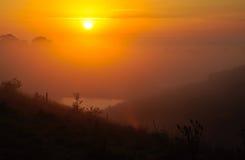 Nebelhafter Sonnenaufgang Stockbilder