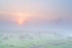 Nebelhafter Sonnenaufgang auf niederländischem Ackerland Lizenzfreie Stockfotografie