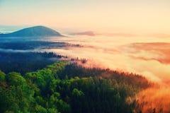 Nebelhafter Tagesanbruch in schöne Hügel Spitzen von Hügeln haften heraus vom nebeligen Hintergrund, ist der Nebel gelb und die O Stockfotografie