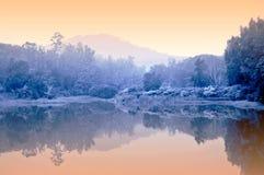 Nebelhafter Teich Stockfoto
