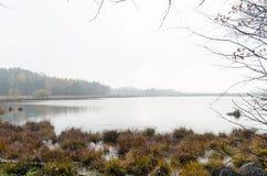 Nebelhafter Teich an der Herbstsaison lizenzfreie stockfotos