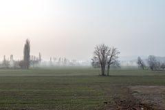 Nebelhaftes Ackerland nahe Susurluk, Balikesir, die Türkei Lizenzfreie Stockbilder