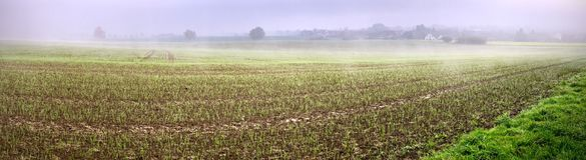 Nebelhaftes Panorama des Ackerbaus lizenzfreies stockbild