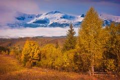 Nebelhaftes Tal mit Schnee-mit einer Kappe bedeckten Bergen Stockfotos