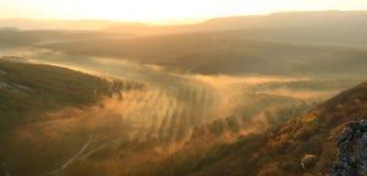 Nebelhaftes valey am Sonnenuntergang Stockbilder