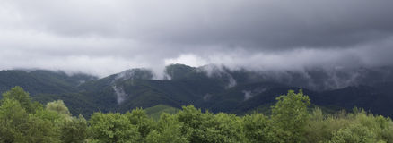 Nebelige Berge Stockbilder