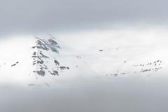 Nebelige Berge bei Arskogssandur Nord-Island Lizenzfreie Stockfotos