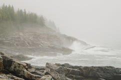 Nebelige felsige Küste des acadia-Nationalparks Stockbilder