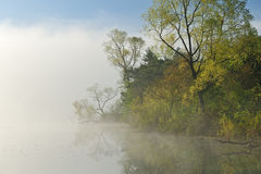 Nebelige Frühlings-Landschaft Stockfoto