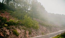 Nebelige gerade Straße Africain-Landschaft Lizenzfreie Stockbilder