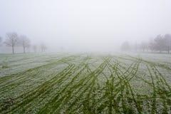 Nebelige Golfplatz-Fahrrinne stockfotografie