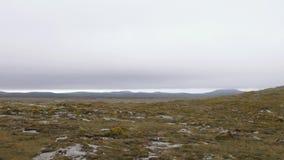 Nebelige Hügel und Sümpfe in Connemara, Irland stock video footage