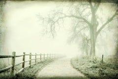 Nebelige Herbst-Szene Lizenzfreie Stockfotografie