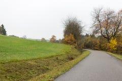 Nebelige Herbstlandschaft Lizenzfreie Stockfotografie