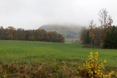 Nebelige Herbstlandschaft Lizenzfreies Stockfoto