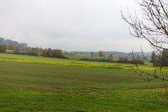 Nebelige Herbstlandschaft Stockbild