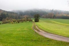 Nebelige Herbstlandschaft Stockfoto