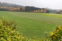 Nebelige Herbstlandschaft Stockbilder