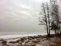 Nebelige Küste des gefrorenen Wintermeeres Finnland-Bucht stockfotografie