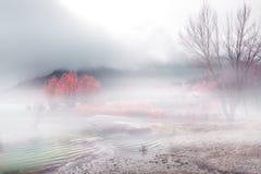 Nebelige Landschaft Lizenzfreie Stockfotografie