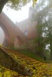 Nebelige Landschaft des Kwidzyn Schlosses und der Kathedrale Lizenzfreies Stockfoto