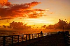 Nebelige Landschaft des von hinten beleuchteten Tageslichtes Stockbilder