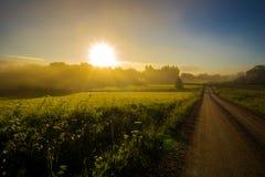 Nebelige Landschaft des von hinten beleuchteten Tageslichtes Stockfoto