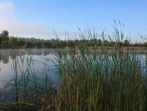 Nebelige Landschaft mit einem See Stockbild