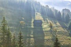 Nebelige Morgensonnenaufganglandschaft Stockbilder