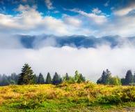 Nebelige Morgenszene in Nationalpark Triglav, Bohinj See locati stockfotografie